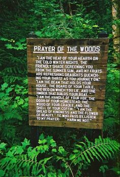 prayer-of-the-woods